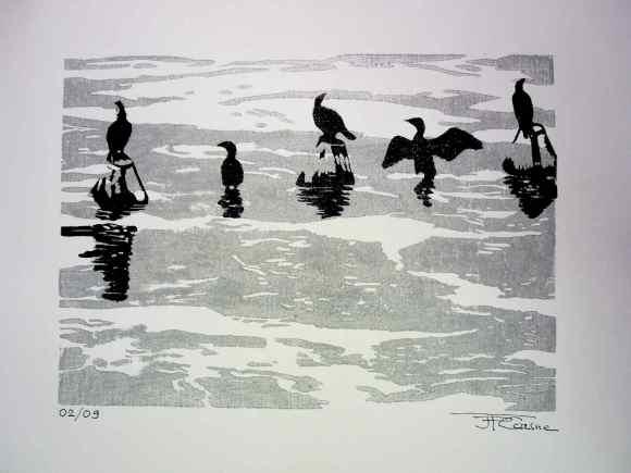 cormorans sur toile