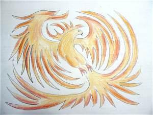 phoenix droite